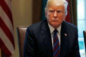 Tổng thống Donald Trump cáo buộc Google gian lận kết quả tìm kiếm