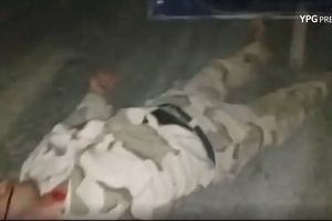 Thủ lĩnh thánh chiến Syria mất mạng trước người Kurd ở Aleppo