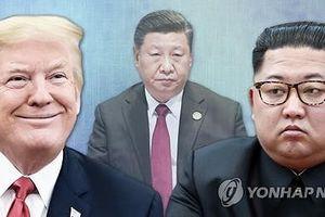 Tập Cận Bình không thăm Triều Tiên vì quá bận?