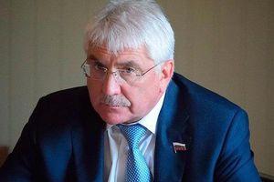 Nghị sĩ Duma: Nga phải yêu cầu Israel ngừng ném bom Syria