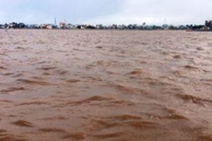 Cảnh báo lũ trên sông Cửu Long, sạt lở đất ở vùng núi phía bắc