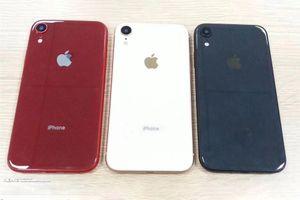 iPhone XS bất ngờ xuất hiện với 3 phiên bản màu: Đỏ, Xanh và Trắng