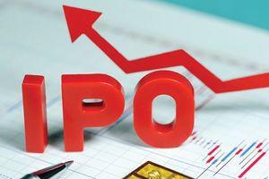 10 DN được phê duyệt phương án cổ phần hóa trong tháng 8