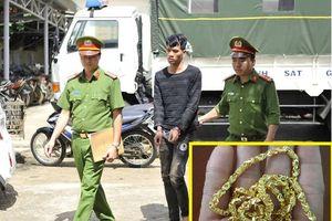 Thanh niên giả vờ mua rồi cướp vàng ở Đắk Lắk khai thêm vụ mới