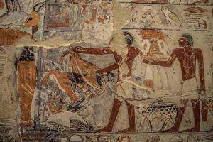 Khám phá lăng mộ 4500 năm tuổi đẹp nhất Ai Cập