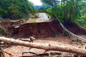 Mường Lát (Thanh Hóa): Thông toàn tuyết Quốc lộ 15C, thiệt hại ước tính 2.000 tỷ đồng