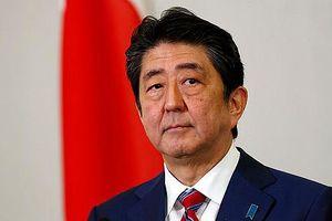 Nếp nhăn mới trên trán Thủ tướng Abe và cuộc 'đối đầu' tại Nga