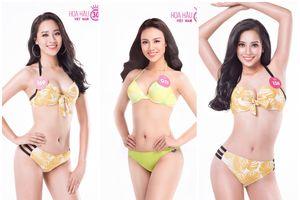 Những ứng viên sáng giá cho ngôi vị Hoa hậu Việt Nam 2018