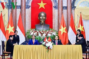 Chủ tịch nước Trần Đại Quang và Tổng thống Joko Widodo họp báo