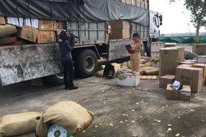 Bắt hơn 1 tấn da đà điểu đang trên đường vào Nam tiêu thụ