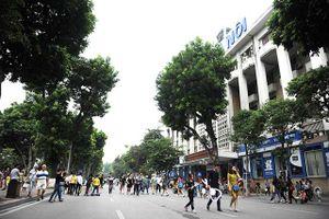 Hà Nội: Sắp tới sẽ cấm tuyệt đối việc mang thú nuôi vào phố đi bộ