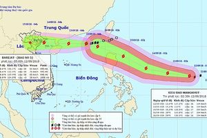 Song bão nhiệt đới chuẩn bị đổ bộ vào Trung Quốc