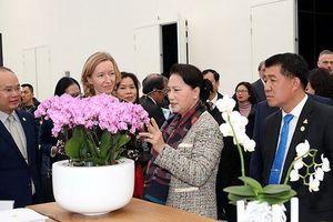 Chủ tịch Quốc hội Nguyễn Thị Kim Ngân thăm Trung tâm Nông nghiệp công nghệ cao ở Hà Lan