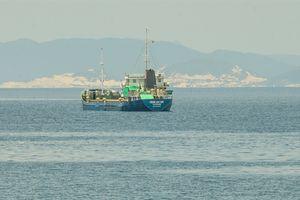 Một tàu biển bị giữ cả tháng tại cảng Vũng Rô mà không rõ lý do!