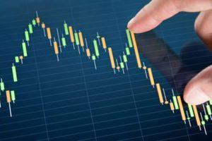 Cổ phiếu của chủ đầu tư chung cư Carina giảm thê thảm