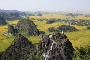 Những điểm ngắm lúa chín đẹp nhất Việt Nam không thể bỏ qua