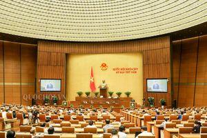 Chưa thông qua Luật Đặc khu, Quốc hội kêu gọi nhân dân bình tĩnh