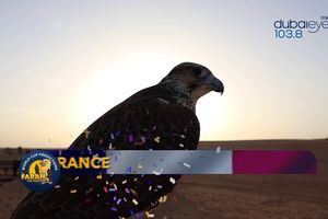 Dự đoán kết quả trận Pháp vs Peru hôm nay của 'nhà tiên tri' chim cắt Farah