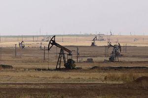 Chính phủ Syria hợp tác khai thác dầu với người Kurd