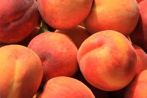 Những lợi ích tuyệt vời từ loại quả vừa chua vừa ngọt