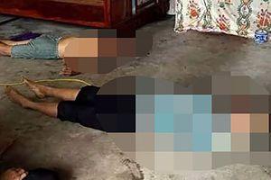 Thái Bình: 2 vợ chồng bị điện giật chết thương tâm