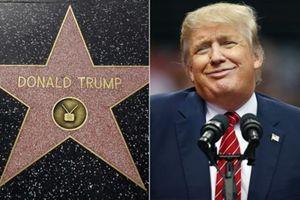 Nóng nhất hôm nay: TT Donald Trump có thể bị gỡ ngôi sao khỏi đại lộ Danh vọng