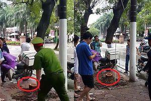 Vụ cây sưa ở Hà Nội bị cưa trộm: Bắt giữ 6 đối tượng