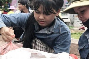 Quảng Ngãi: No con mắt ở 'chợ' sim rừng vùng cao