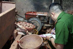 Trộn đất vào khoai tây Trung Quốc để giả hàng Đà Lạt