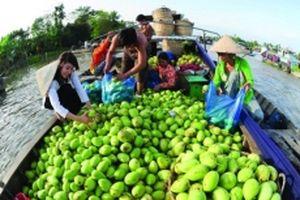Việt Nam chưa tận dụng thế mạnh phát triển du lịch nông nghiệp