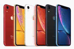 iPhone Xr: chiếc iPhone 'giá rẻ' mới của Apple