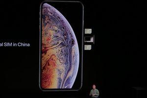 Loại iPhone 2 SIM nào sẽ dùng được ở Việt Nam?