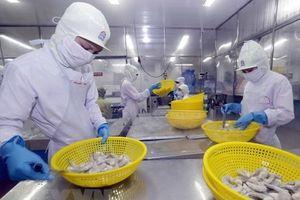 Kim ngạch xuất khẩu tôm khó vượt mốc tăng trưởng của năm 2017
