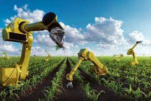 Vốn ngoại tìm đường vào dự án nông nghiệp thông minh