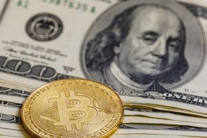 Tỷ giá ngoại tệ hôm nay 13/9: USD tăng nhẹ, thời điểm có lợi để đầu tư