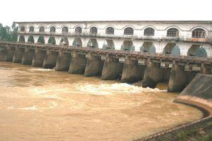 Hơn 2/3 dân số Đà Nẵng phải dùng nước nhiễm mặn