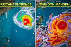 Rùng mình hình ảnh so sánh siêu bão Mangkhut – Florence