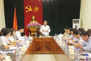 Gần 250 trường hợp giao đất trái thẩm quyền ở thị xã Thái Hòa