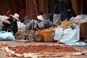 Đà Lạt quyết cấm cửa nông sản lạ vào chợ