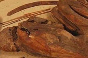 Hé lộ kỹ thuật ướp xác trường tồn của người Ai Cập cổ