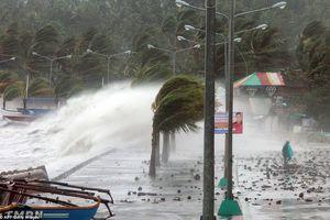 Quảng Ninh, Hải Phòng: Cấm biển, sẵn sàng di dân ứng phó bão Mangkhut