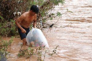 Học sinh qua suối bằng tú nilon, Chủ tịch UBND tỉnh Điện Biên chỉ đạo xây cầu
