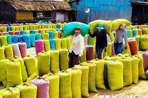 Chính phủ Việt Nam trao tặng 5.000 tấn gạo cho nhân dân Cuba