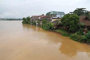 Nước sông Hồng tại Yên Bái không bị ảnh hưởng sau sự cố vỡ đập chứa nước thải tại Lào Cai