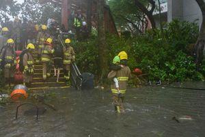 Mangkhut càn quét Hồng Kông, Macau đóng cửa sòng bài vì siêu bão