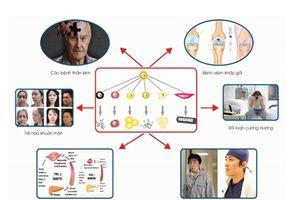 Cơ hội tiếp cận với các thành tựu trong Y tế dự phòng Nhật Bản