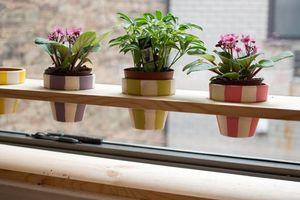 Cách khiến ngôi nhà sạch tinh tươm để đón mùa Thu