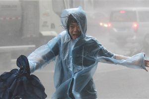 Cảnh tượng siêu bão Mangkhut tàn phá Trung Quốc