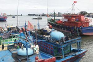 Tăng nguy cơ nợ xấu từ khoản vay đóng mới tàu cá