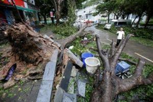 Siêu bão Mangkhut đổ bộ miền nam Trung Quốc